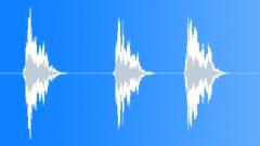 Seagulls Screeching 002 Sound Effect