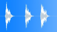 Stock Sound Effects of Seagulls Screeching 002