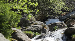 Stock Video Footage of Divine scenery, fresh mountain river pass green through spring forest