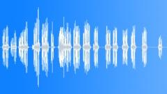 crickets 006 - sound effect