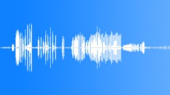 crickets 002 - sound effect