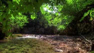 Stock Video Footage of 4k. Forest River. HDR Time Lapse Shot Motorized Slider