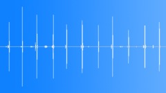 cricket 055 - sound effect
