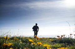 Solitary photographer's silhouette in field of wild flowers Stock Photos