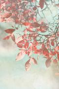 Beautiful grunge autumnal background Stock Illustration