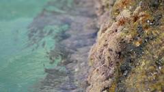 paradice ocean clean sea water splash on coast rocks - stock footage