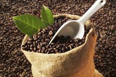 Coffee beans in gunnysack, close-up - stock photo