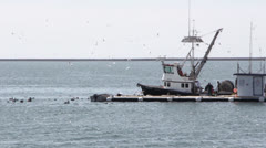 Commercial Fishing Boat and Live Bait Barge - stock footage