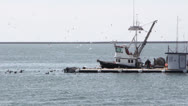 Stock Video Footage of Commercial Fishing Boat and Live Bait Barge