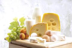 Foodstill with cheese, eggs and milk - stock photo