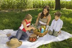 Stock Photo of Mother with daughter and son at picnic