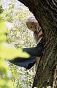 Girl (8-9) lying on tree branch, low angle view - stock photo