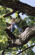 Girl on a tree, low angle view - stock photo