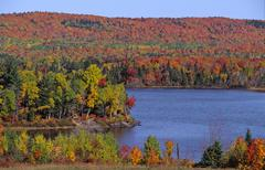 USA, Moosehead Lake, Greenville, Maine, Indian Summer Stock Photos