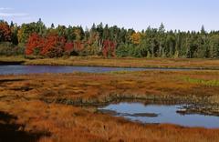 USA, National park Arcadia, Maine - stock photo