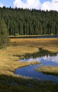 Germany, Bavarian forest, Grossuer Arbersee - stock photo