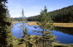 Kleiner Arbersee, Bavarian Forest, Germany - stock photo