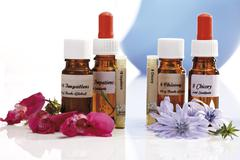 Bottles with Bach Flower Stock Remedy, Impatiens and Chicory (Cichorium intybus) - stock photo
