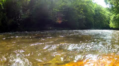North Carolina Stream Water Stock Footage