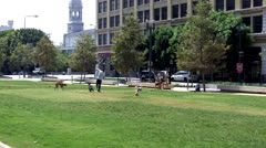 Dog Park In Downtown Los Angeles CA Stock Footage