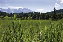 Stock Photo of Germany, Geroldsee, Oberbayern, Bayern, Deutschland, View of rural scene with