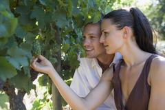 Stock Photo of Young couple looking at grape vine, close-up