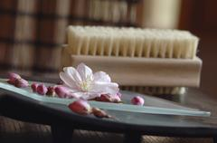 Blossoms on platter, nailbrush in background, close-up Stock Photos