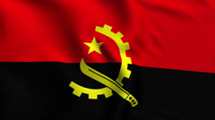 Angola Weave Textured Flag Loop Stock Footage