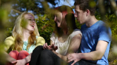 Cute Couple Talk To Their Friend In The Park Stock Footage