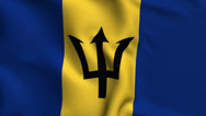 Stock Video Footage of Barbados Weave Textured Flag Loop