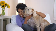 African American woman posing with dog in lap Stock Footage