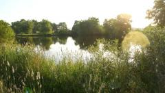 Bright atmospheric shot of the lake shore in the morning, sun beams, steadicam Stock Footage