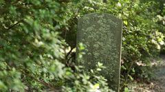 Tombstone In Bushes - stock footage