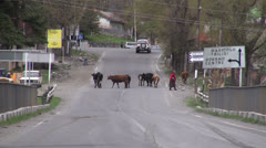 Kazbegi streets, road sign 'Tbilisi', Georgia Stock Footage