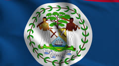 Belize Weave Textured Flag Loop Stock Footage