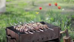 Kebabs on the grill outdoors Stock Footage
