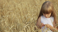 Stock Video Footage of Funny little girl standing in wheat eating grain moving her hands and laughing