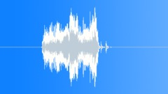 record scratch  010 - sound effect