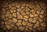 Stock Photo of dried terrain