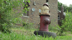 Detroit Fire Hydrant Abandoned Amidst Urban Decay Stock Footage