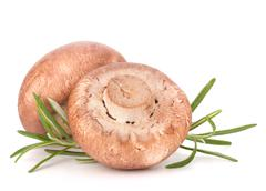 Stock Photo of brown champignon mushroom and rosemary leaves