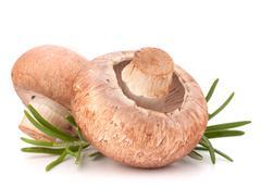 Stock Photo of brown champignon mushroom and rosemary leaves