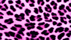 Pink Animal Print Stock Footage