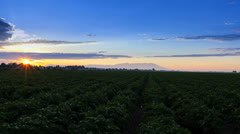 timelapse sunrise over farm fields with moving clouds - stock footage