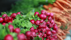 Vegetables at a farmers market radish and carrot - stock footage