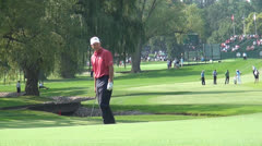 Pitching, Golfers, Golf, 2D, 3D Stock Footage