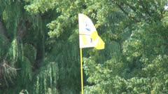 Flag at Hole 7, Golf, 2D, 3D Stock Footage