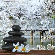 zen basalt stones and bamboo - stock illustration