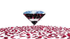 Diamond attracting rose petals, camera rotating, against white Stock Footage