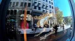 Fisheye Luxury French retail Louis Vuitton Window Display reflection Stock Footage